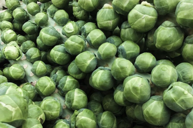 Brussels Sprouts - Pixabay