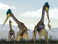 Quetzalcoatlus.jpg