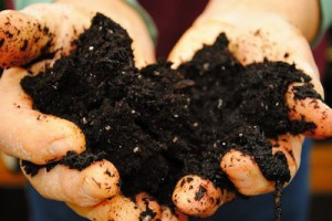 soil-300x200.jpg