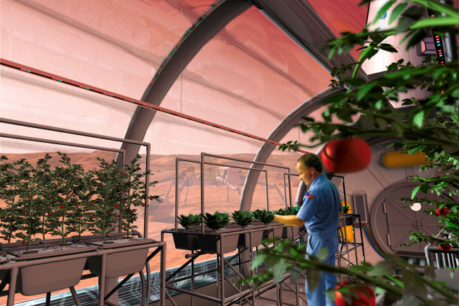 Mars Greenhouse - NASA