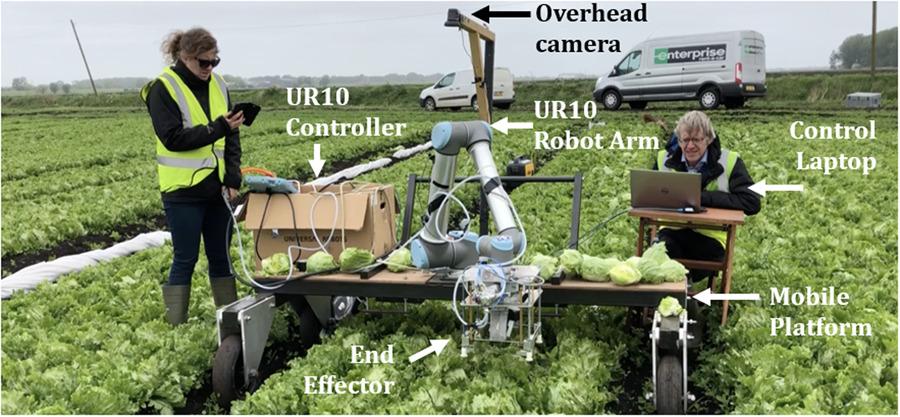 Lettuce Picking Robot - J Field Robotics