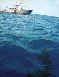 sea_ship.jpg