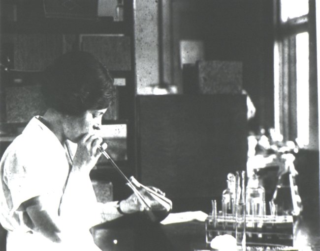 A woman mouth pipetting to select specimens of ectoparasites. Source: National Library of Medicine