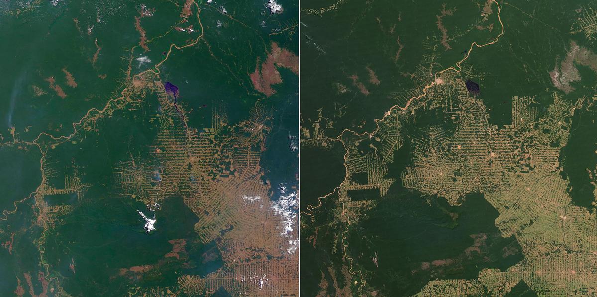 Deforestation satellite view - NASA