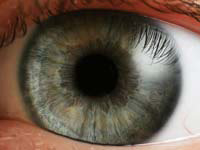 Eyecloseip.jpg