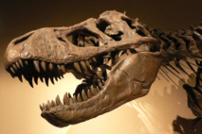 tyrannosaur220.jpg