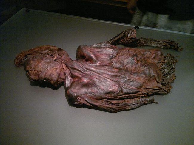 Bog body, Clonycavan Man - Wikimedia Commons