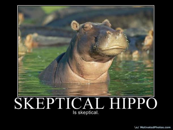 skepticalhippo.jpg