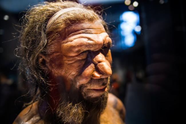 Neanderthal - Shutterstock