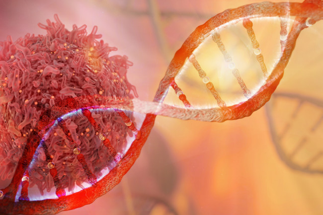 What DNA From 2,600 Tumors Is Telling Scientists About Cancer ...