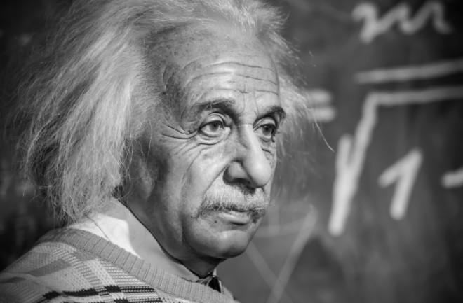 Wax Einstein - Shutterstock
