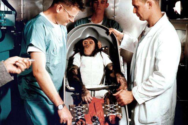 ham the chimp in space - NASA