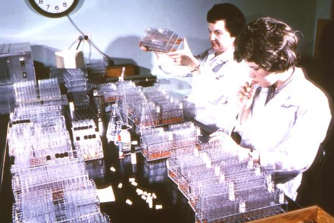 Former Centers for Disease Control (CDC) parasitologist, Dr. Mae Melvin (Lt), examines a collection of test tubes while her laboratory assistant mouth pipettes a culture to be added to these test tubes. Source: David Senser/CDC.