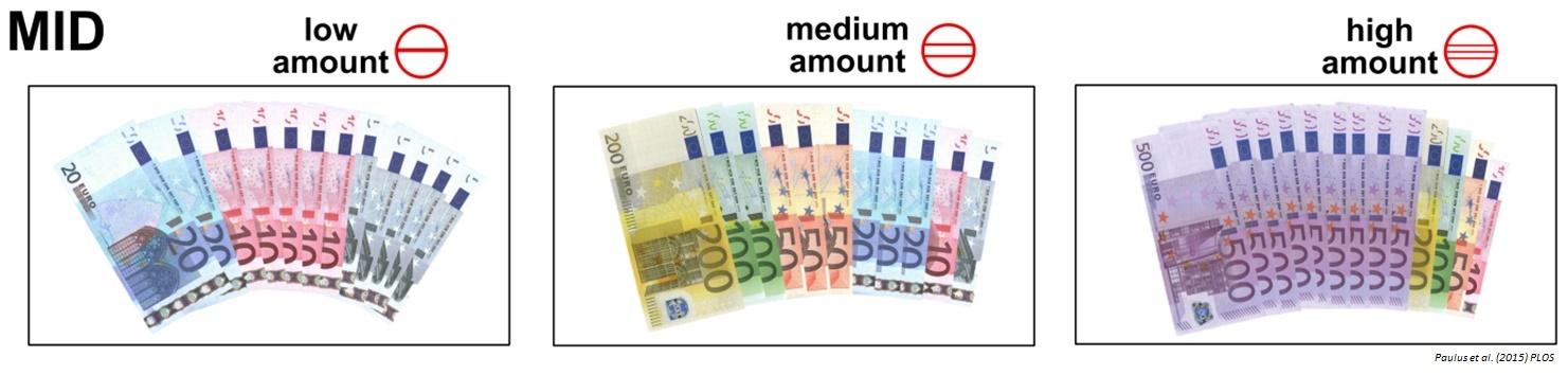 money_fmri.jpg