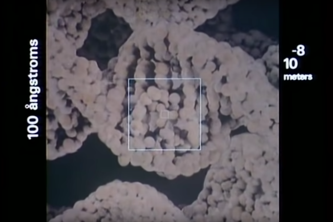 Zooming in on DNA with Powers of Ten. (Credit: Eames Office)