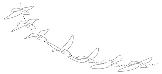 flapping-birds.jpg