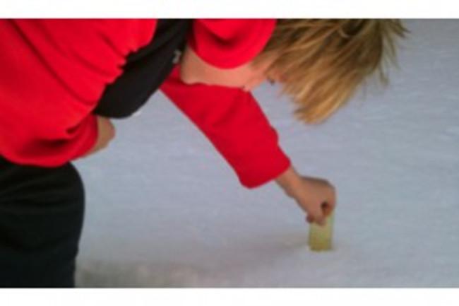 snow-tweets-scistarter-300x199.jpg