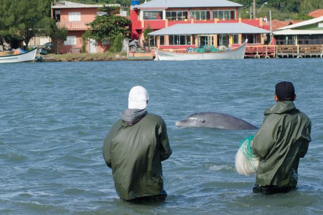 shutterstock_517914529_dolphin_fishermen_laguna_sm.jpg