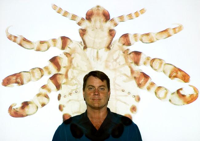 David Reed - Florida Museum of Natural History