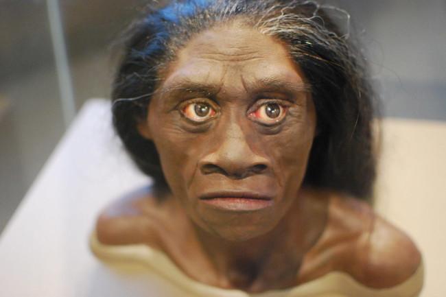Homo Floresiensis hobbits - flickr