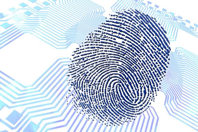 DSC-B0817 01 thumbprint