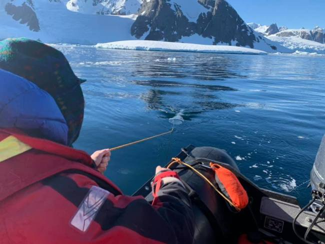 FjordPhyto citizen scientist collecting phytoplankton - Verena Meraldi & Allison Cusick