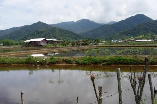 modest-village