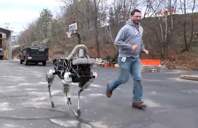 robo-dog.jpg