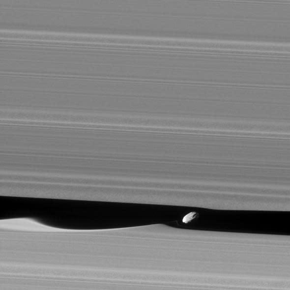 Daphnis inside Saturn's Rings - NASA