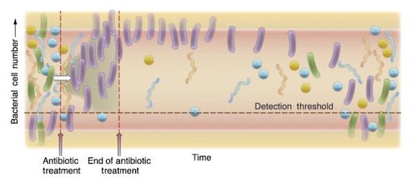 antibiotics-graph6001.jpg