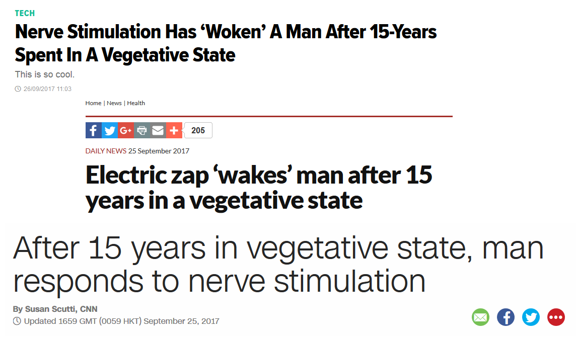 vagus_vegetative.png