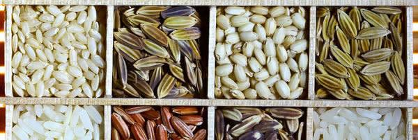 400px-Rice_diversity.jpg