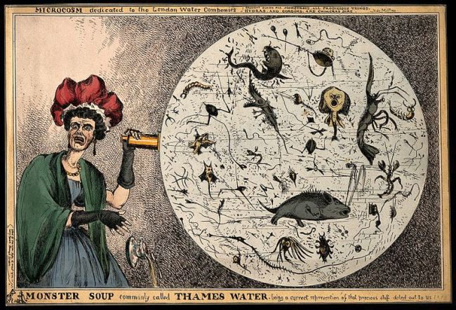 "An 1828 etching by Wililam Heath, ""Monster Soup commonly called Thames Water."" In the midst of an emerging cholera outbreak from abroad, concerns about the hygiene and purity of the River Thames mounted. revealing the impurity of London drinking water. Image: W. Heath, 1828. Source: Wellcome Collection. Click for source."