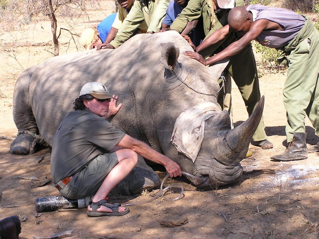 Running-with-Rhinos-Ed-Warner-with-Rhino.JPG-1024x768.jpeg