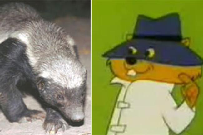badgersquirrel.jpg