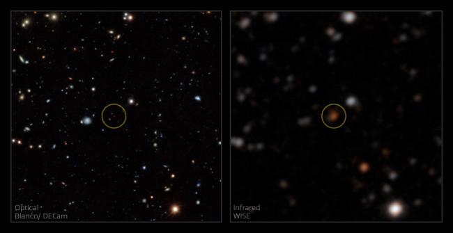 Brown dwarfs hover right at the edge of visibility. A group of citizen scientists brought this one into view by zeroing in on its infrared signature. (Credit: A. Meisner/NOIRLab/NSF/AURA)