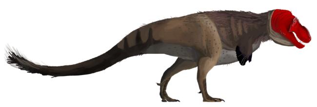 Feather Dinosaur - Wikimedia Commons