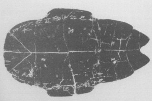 turtle shell used as an oracle bone - World Archaeology