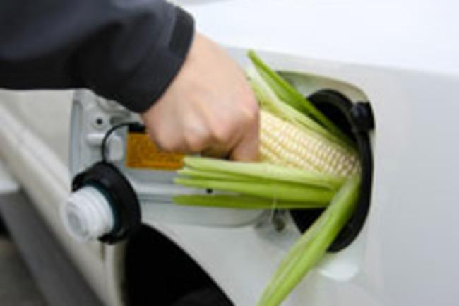 ethanol-fuel.jpg