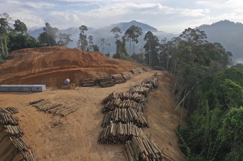 The Human Epoch: When Did the Anthropocene Begin?