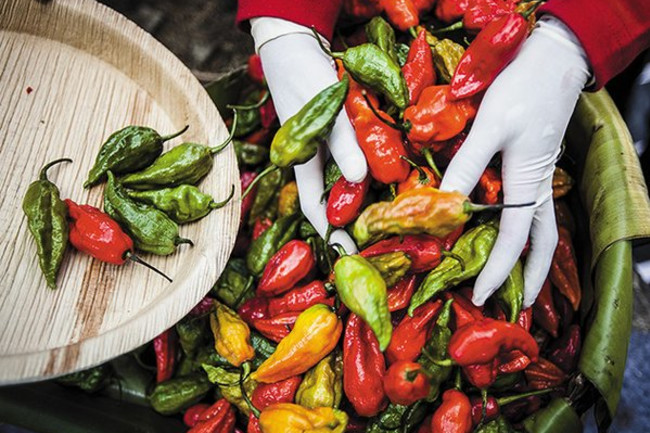 burning-desire-peppers-631__800x600_q85_crop.jpg