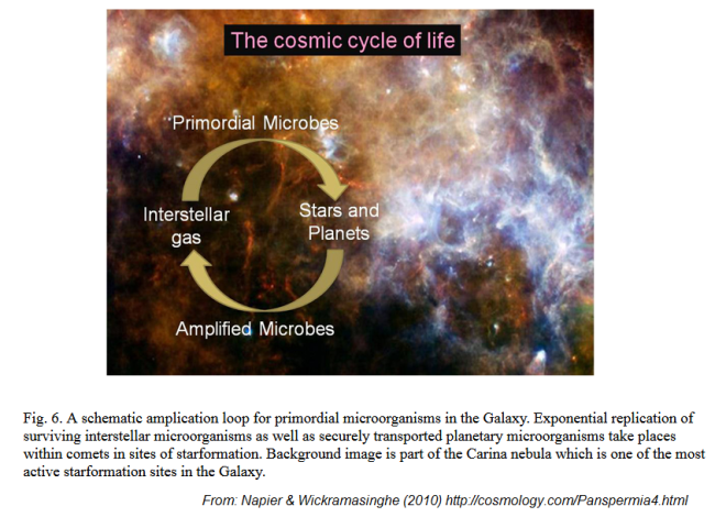 panspermie - http://cosmology.com/Panspermia4.html