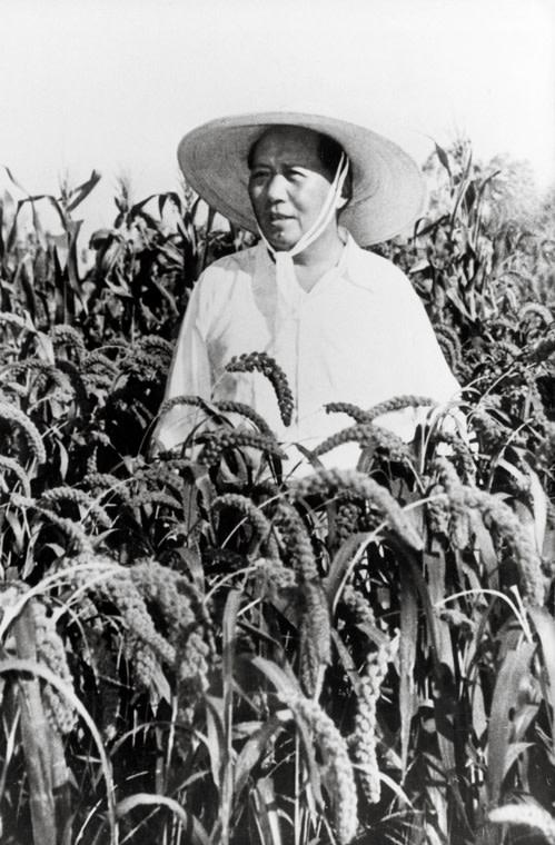 Great-Chinese-Famine.jpg