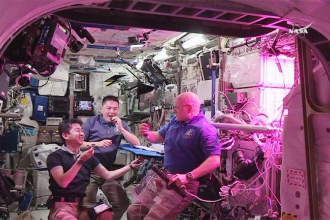 space salad farm settle mars ISS