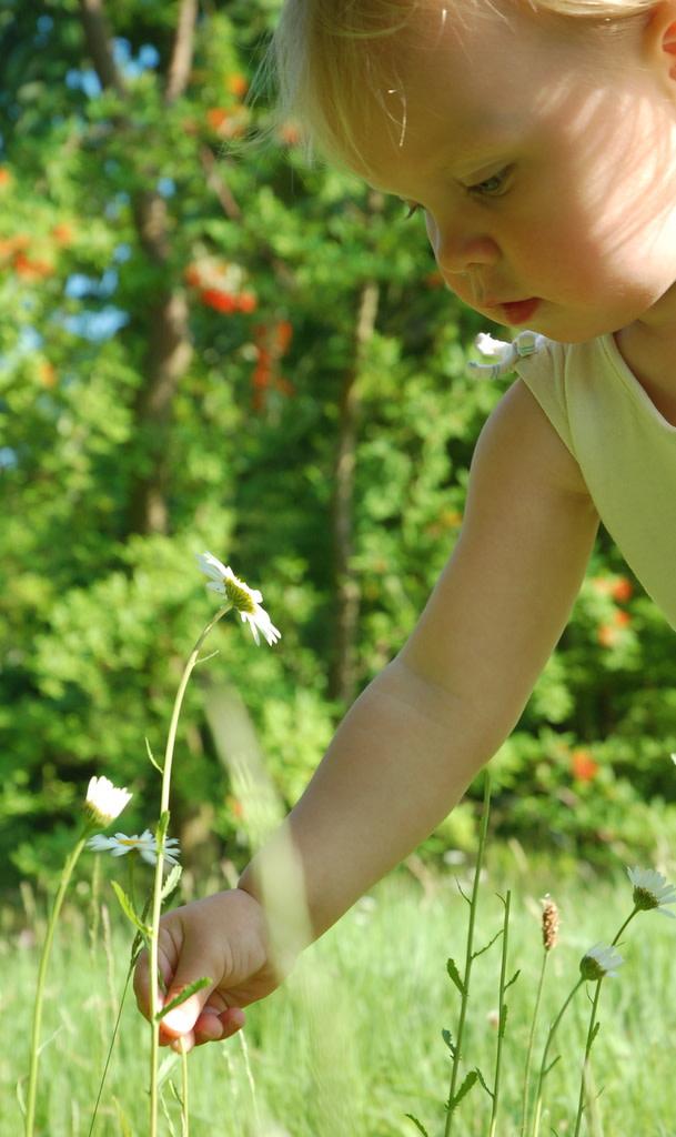 girl-flower.jpg