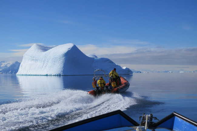 Morning-commute-in-Antarctica-CREDIT-Gail-Ashton.jpg