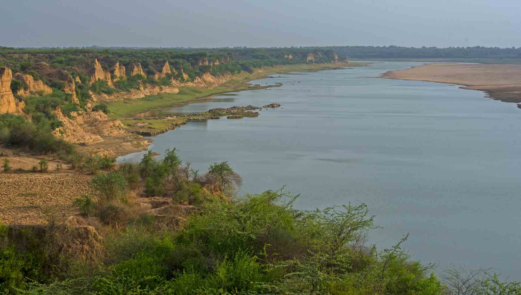 Surrounded by box canyons and dry scrub, India's Chambal River provides critical habitat for a wide variety of wildlife, including several endangered species. (Credit: Dhritiman Mukherjee)