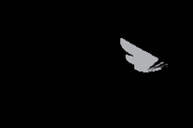 RWJF_Logo_Support_LockUp_cmyk_1c_black-01.png