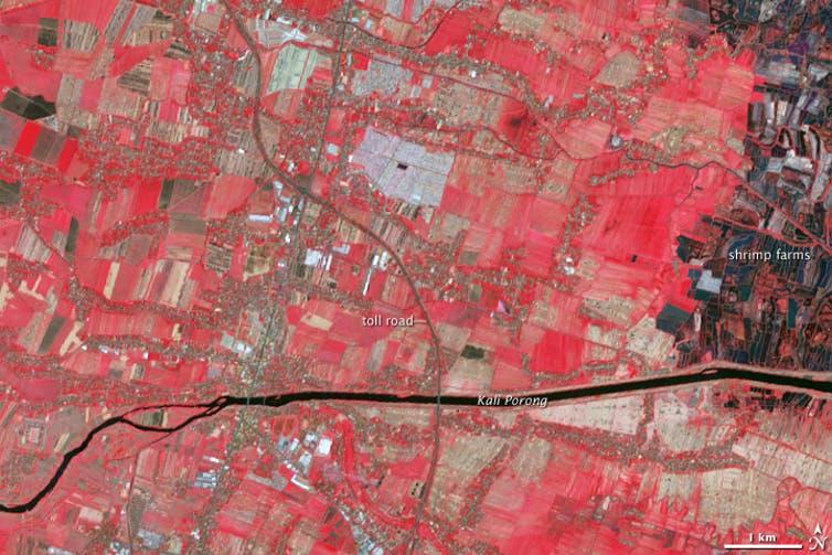 Sidorajo, 2004, false color pre eruption