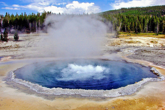 Tracking the Viruses of Yellowstone's Acidic Hot Springs | Discover Magazine
